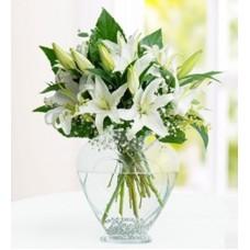 tebrik  çiçekleri