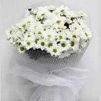 askıma çiçek beyaz papatya buketi